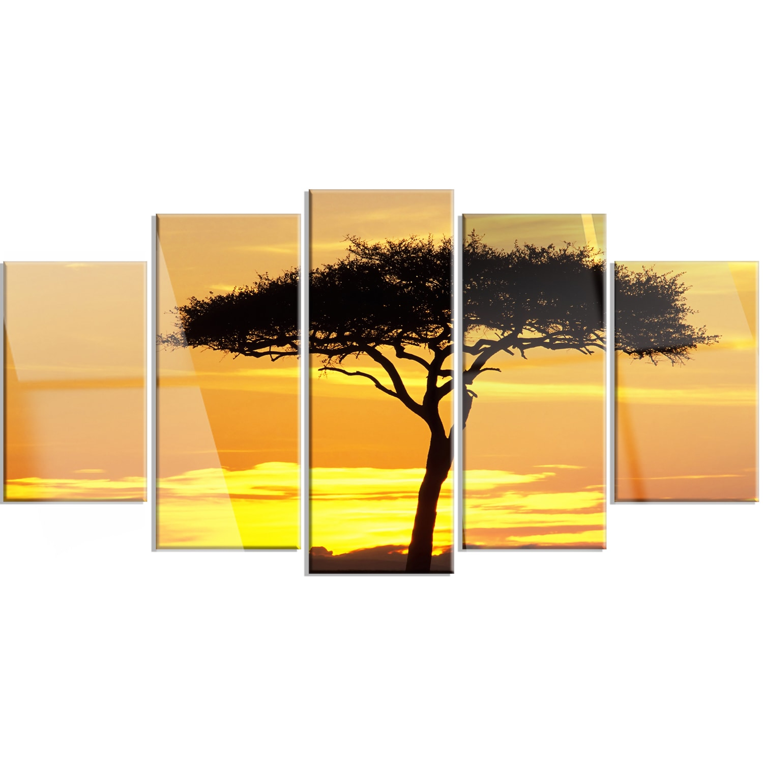 Shop Designart \'Beautiful Sunset Through Acacia Tree\' Extra Large ...