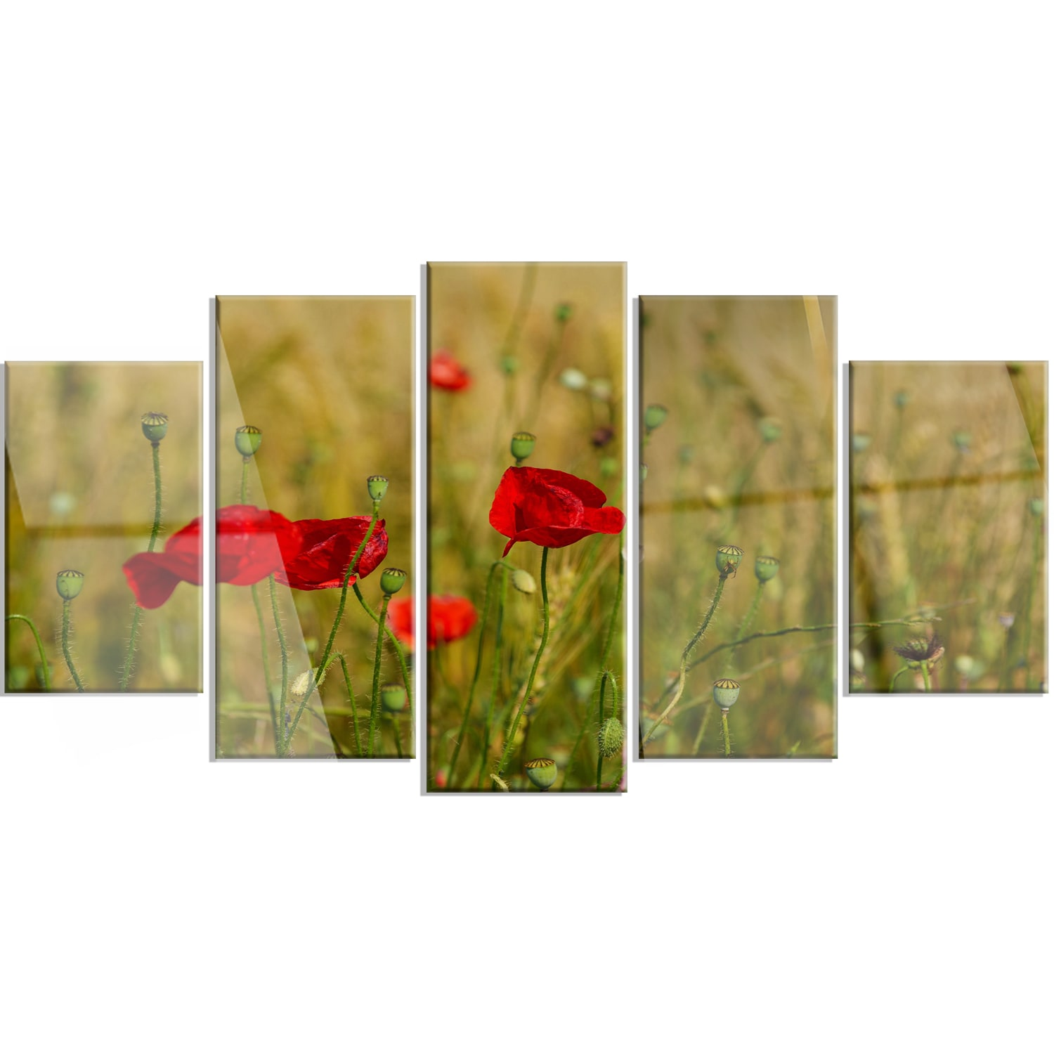 Perfect Metal Poppy Wall Art Ornament - Wall Art Collections ...