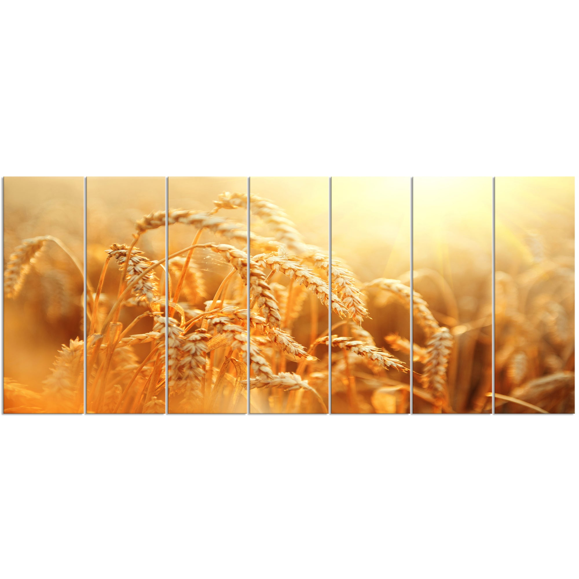 Designart \'Ears of Golden Wheat Close-up\' Landscape Metal Wall Art ...