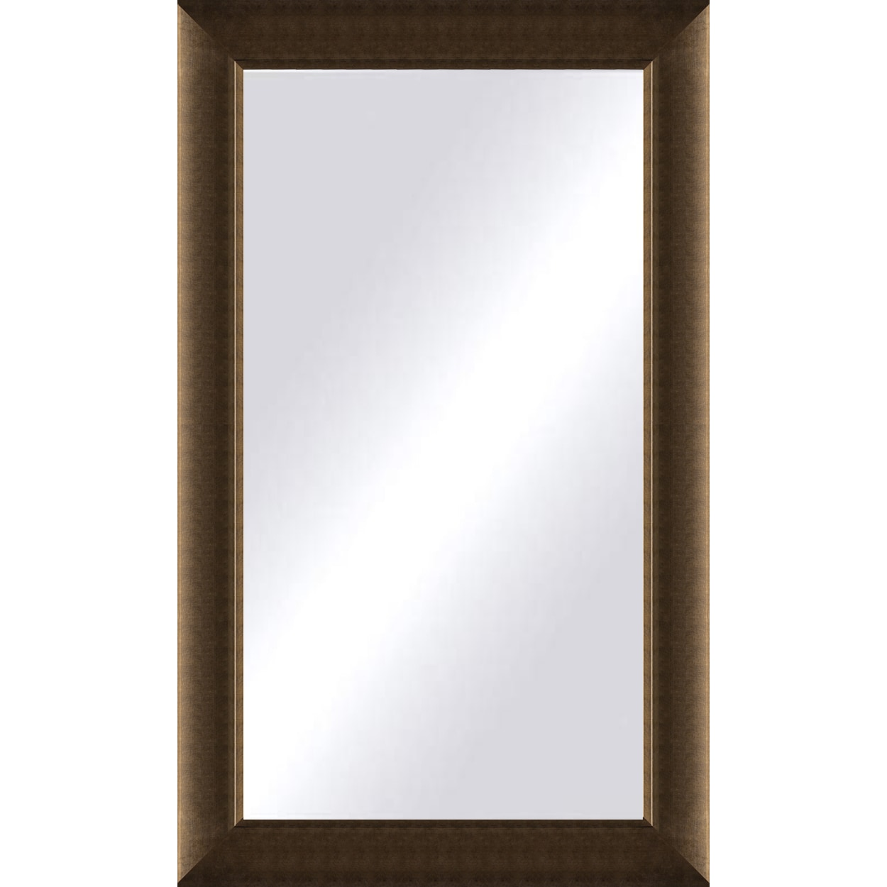 Shop Oversized Light Bronze Framed Mirror - On Sale - Free Shipping ...