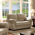 Furniture of America Lemmy Transitional Plush Microfiber Loveseat