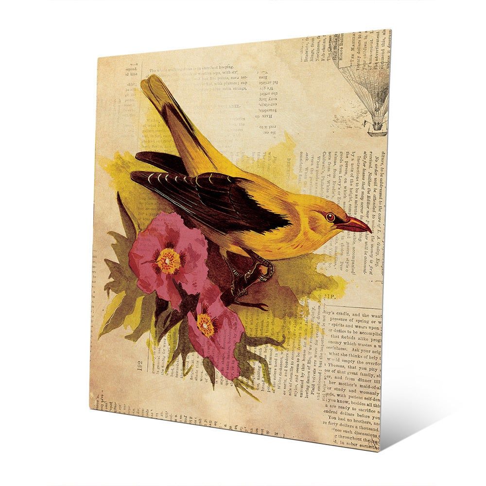 Goldfinch With Fuschia Flowers\' Wall Art on Metal - Free Shipping ...