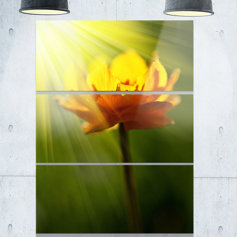 Shop Designart \'Large Yellow Flower in Spotlight\' Large Flower Metal ...