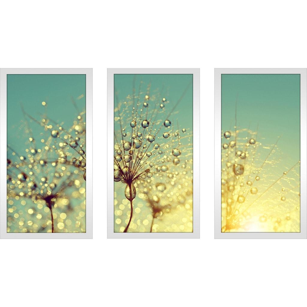 Shop Dewy dandelion flower at sunrise close up Full\' Framed ...