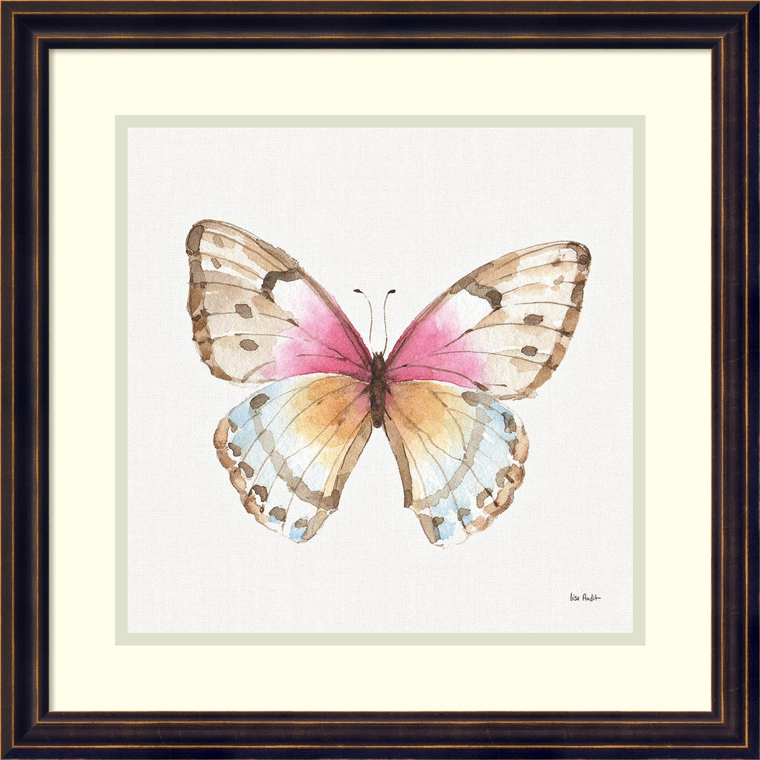 Framed Art Print \'Colorful Breeze XI (Butterfly)\' by Lisa Audit 18 x ...