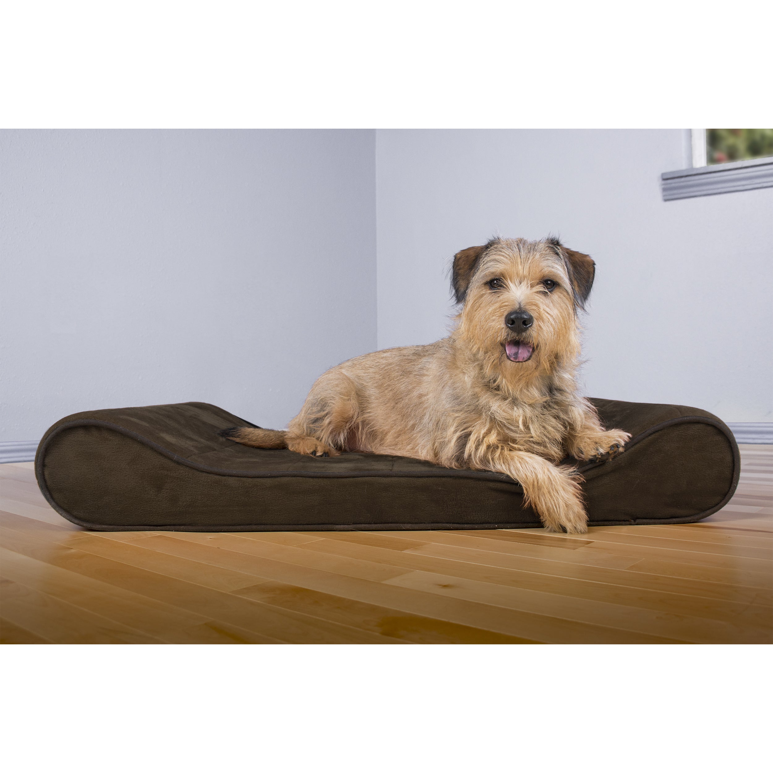 Shop FurHaven Microvelvet Luxe Lounger Orthopedic Contour Pet Bed ...