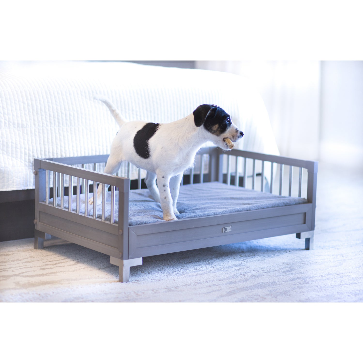 New Age Pet ecoFlex Manhattan Raised Dog Bed with Memory Foam Cushion -  Free Shipping Today - Overstock.com - 21131384