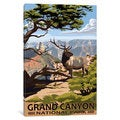 iCanvas 'U.S. National Park Service Series: Grand Canyon National Park (Elk At The South Rim)' by Lantern Press Canvas Print