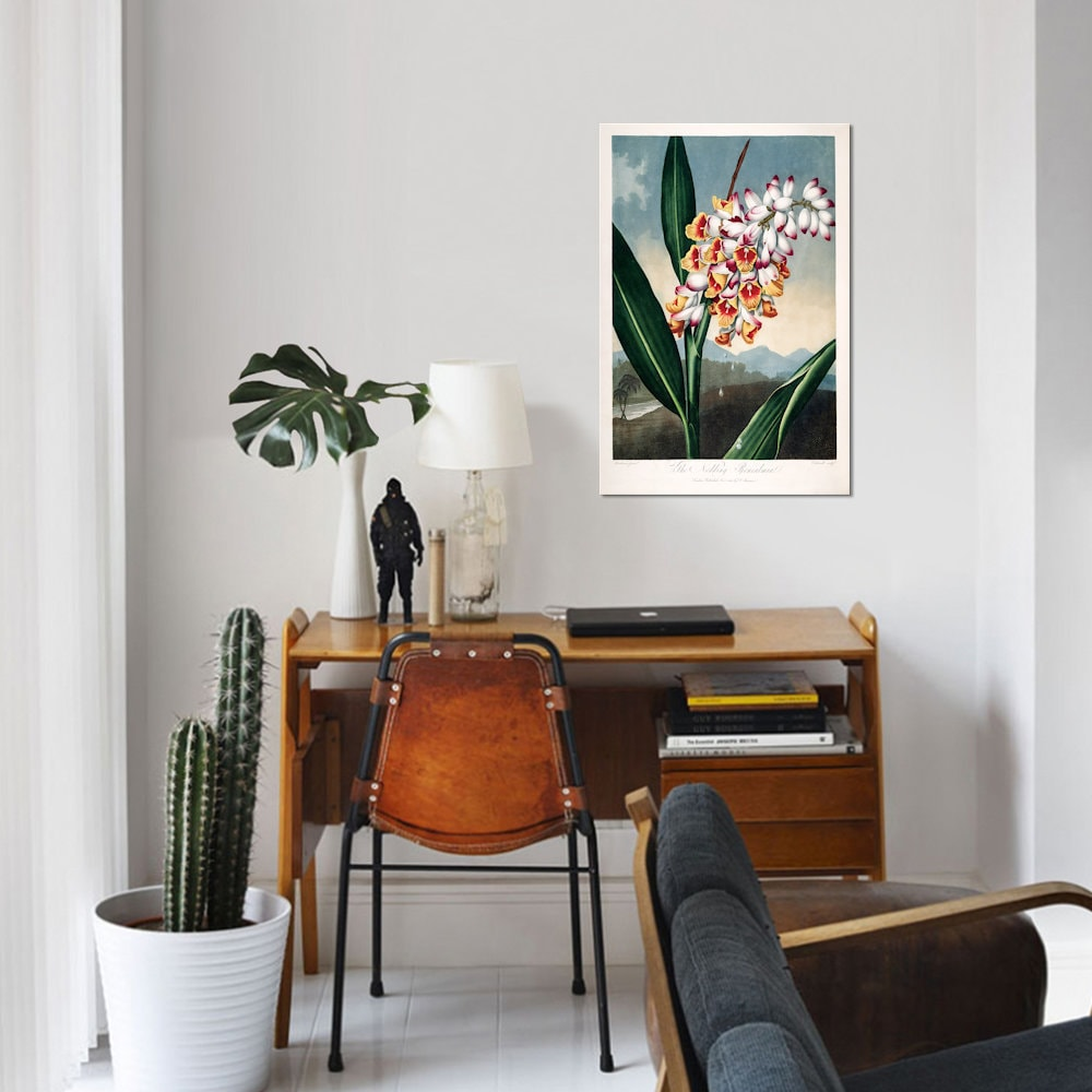 Shop ICanvas Thorntonu0027s Temple Of Flora Series: The Nodding Renealmia By  Peter Charles Henderson Canvas Print   On Sale   Free Shipping Today    Overstock   ...
