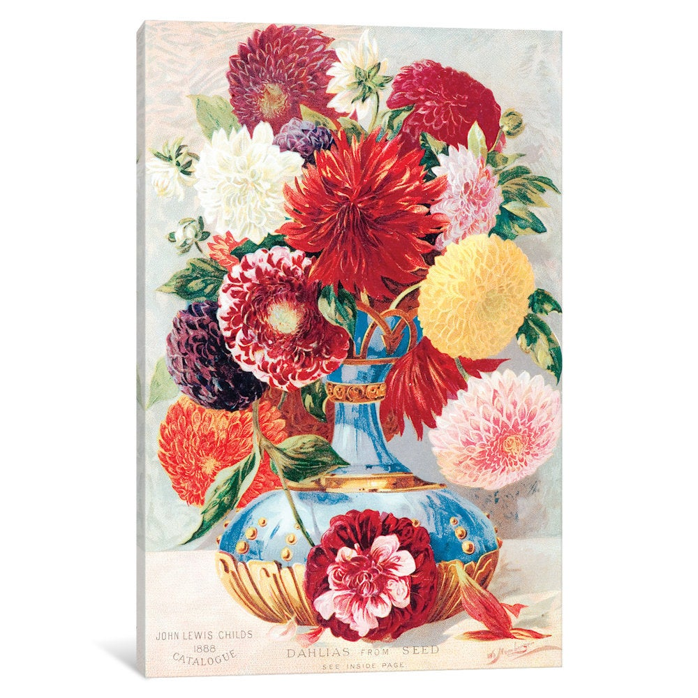 Shop Icanvas Childs New Rare Beautiful Flowers Series Dahlias