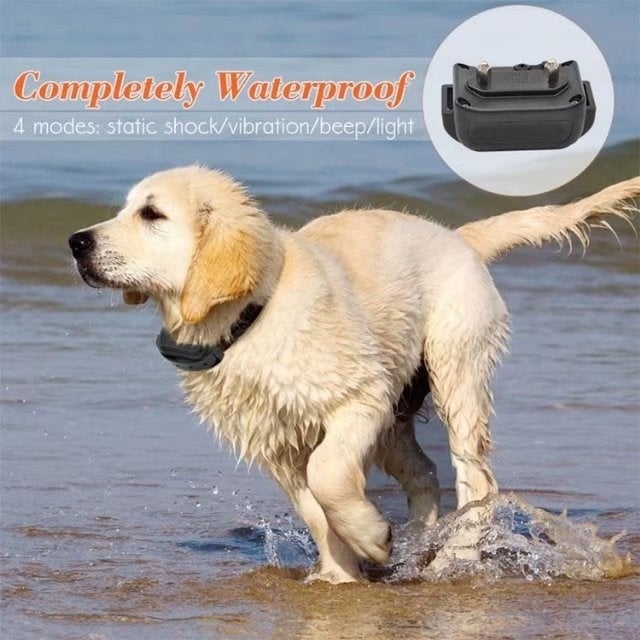 Shop Rechargeable Waterproof Dog Collar With Light Beep Vibration