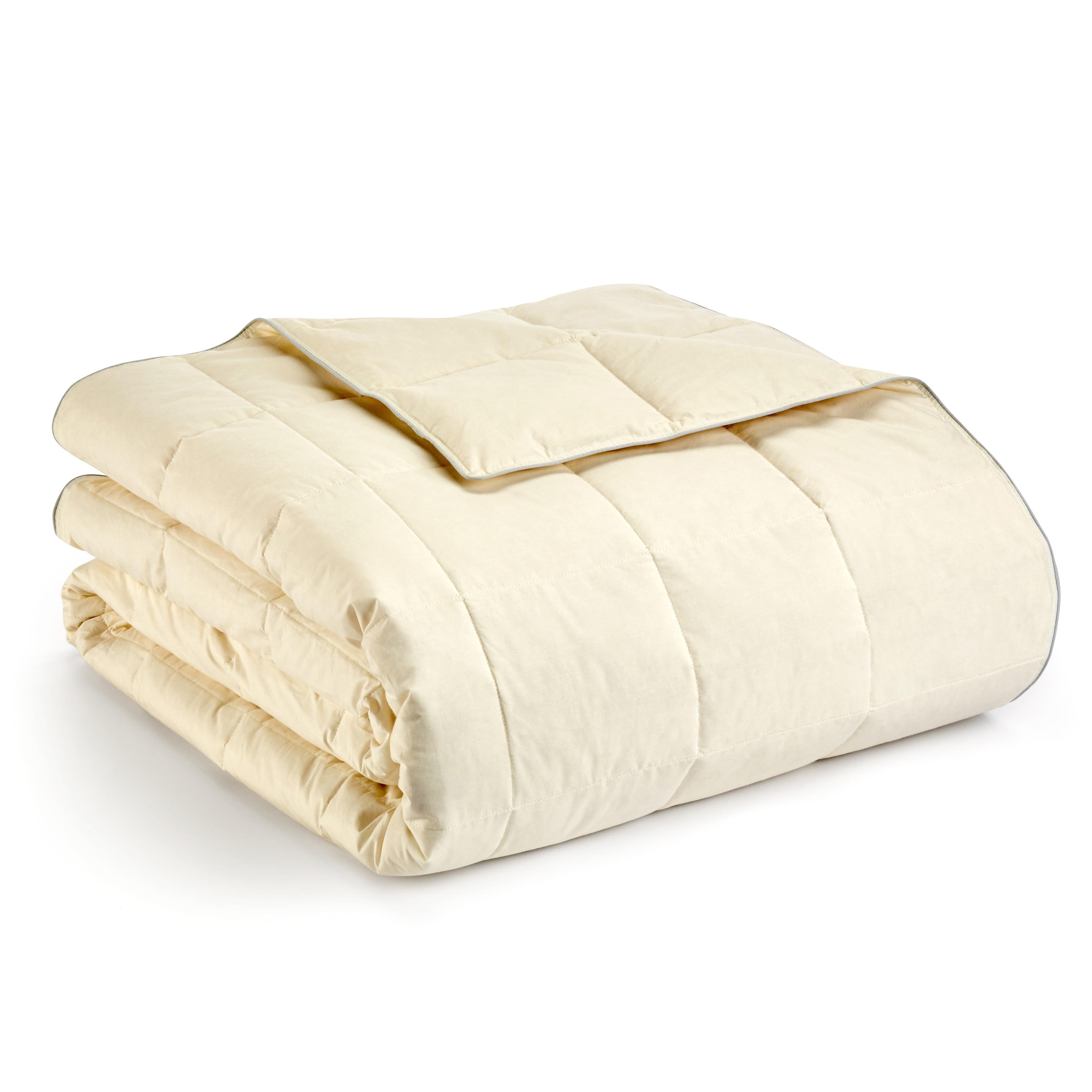 Claritin Allergen Barrier Lightweight Hypoallergenic Down Blanket