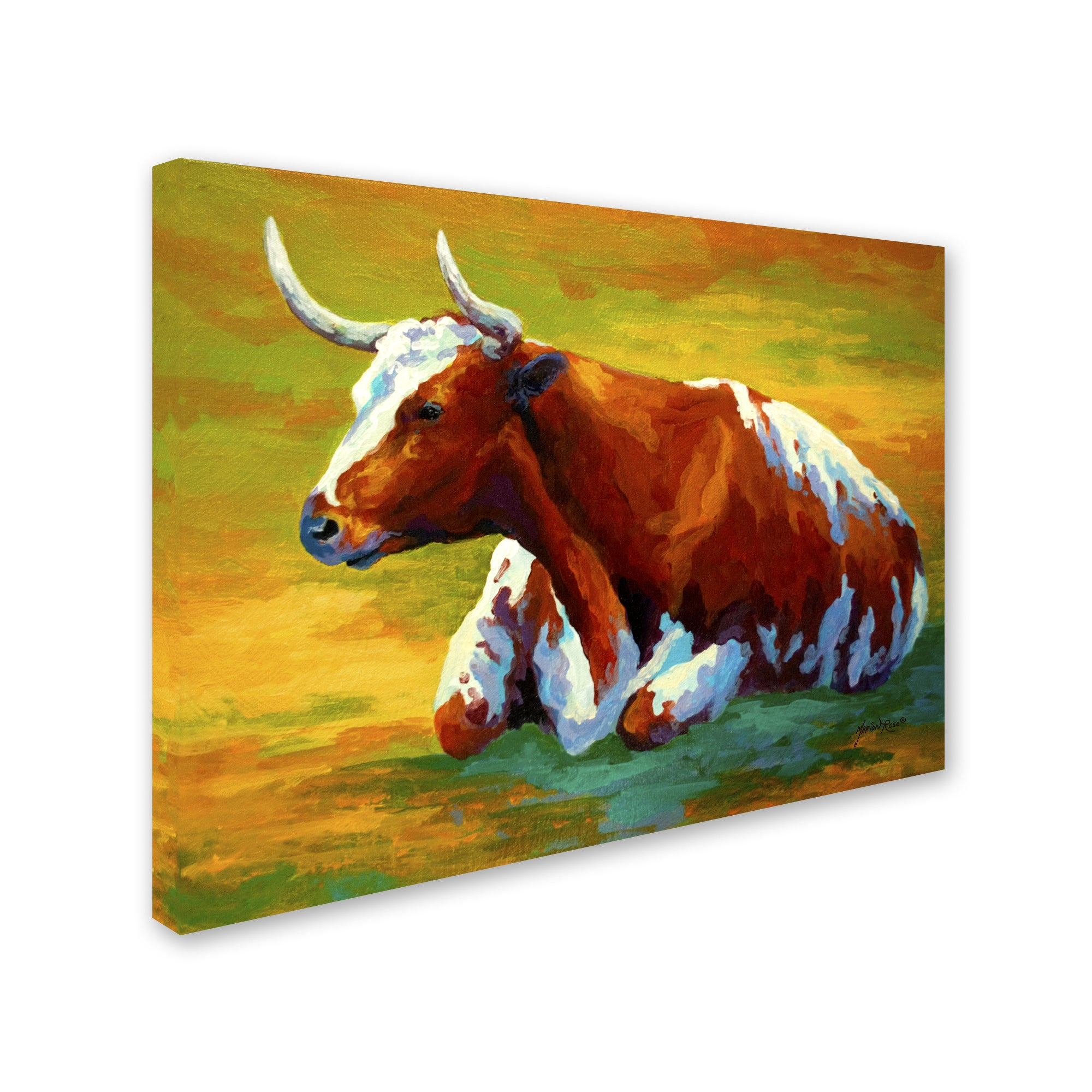 Shop Marion Rose \'Longhorn Cow\' Canvas Art - Free Shipping On Orders ...