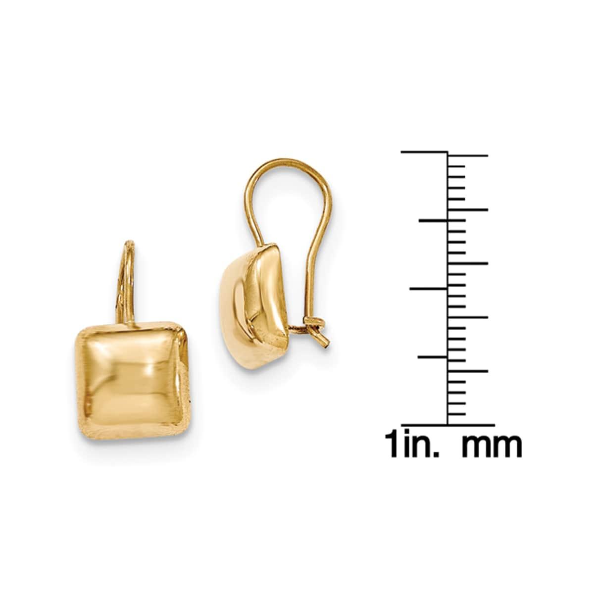 Shop 14 Karat Polished 9.5mm Puffed Square Kidney Wire Earrings ...