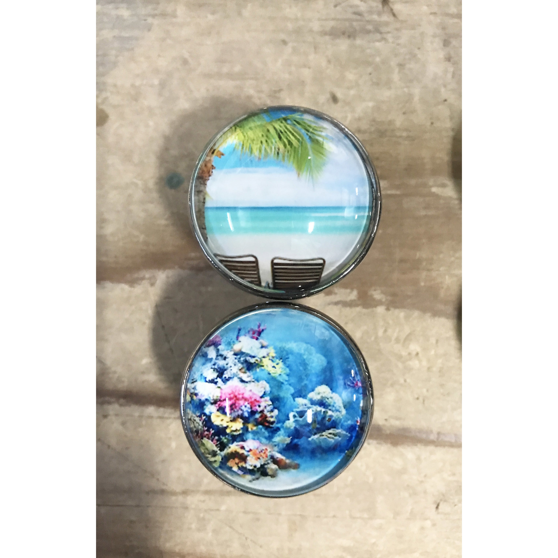 Glass/Chrome Tropical Ocean Beach Theme Drawer Pulls (Set of 6)