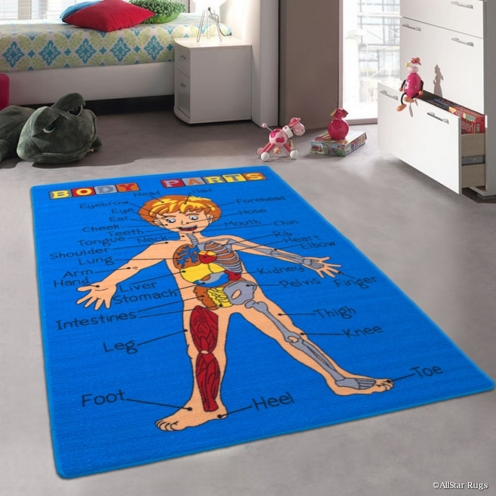 Shop Allstar Kids Human Anatomy Learn All About The Human Rug Blue