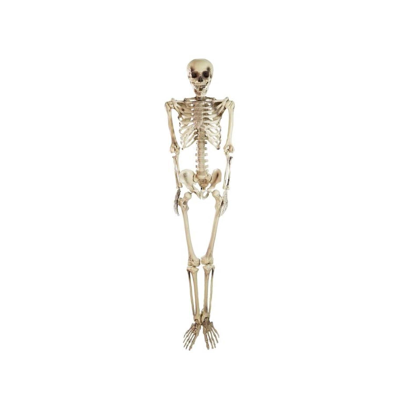 shop 5' spooky life size skeleton indoor/outdoor halloween