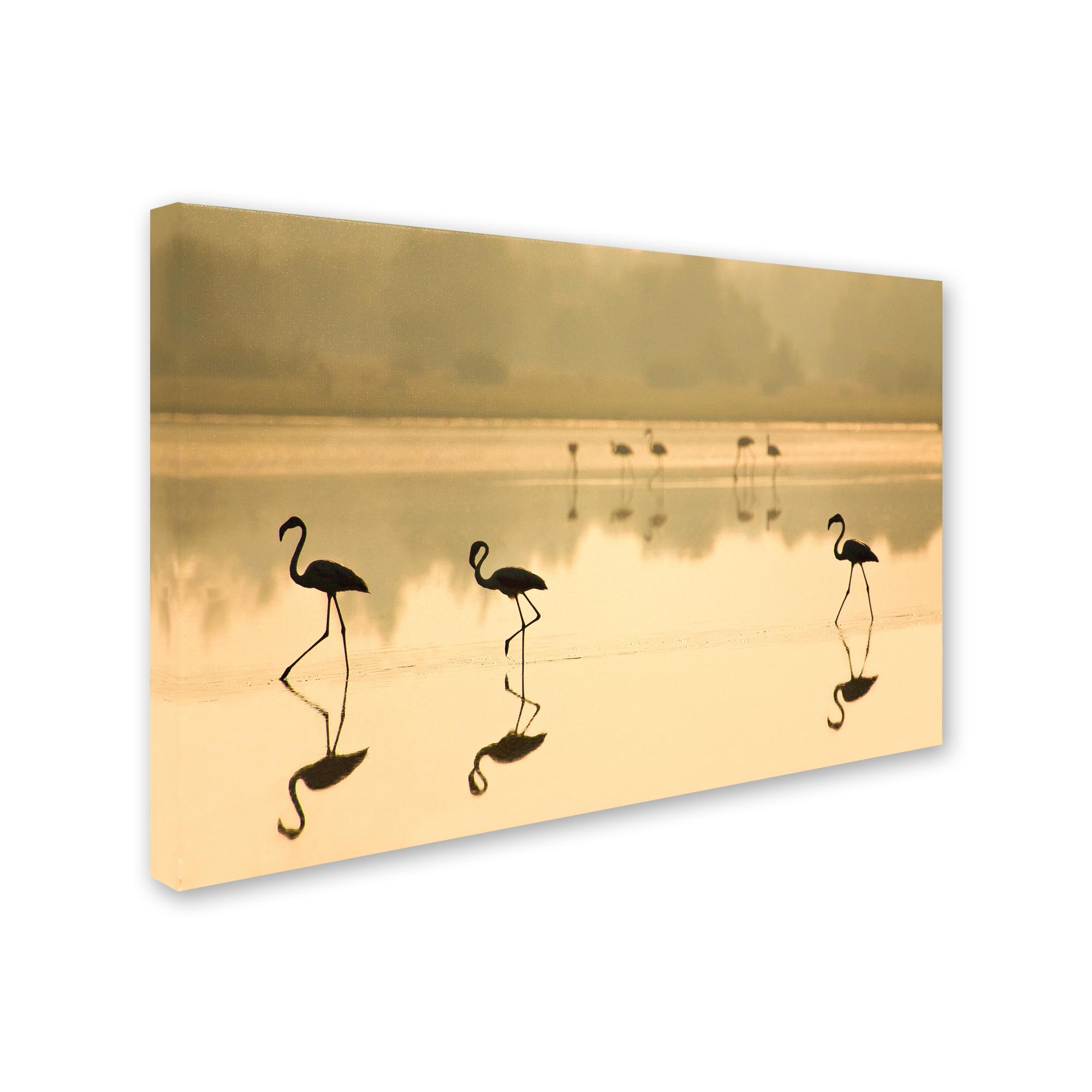 Shop Martin Zalba \'Flamencos\' Canvas Art - On Sale - Ships To Canada ...
