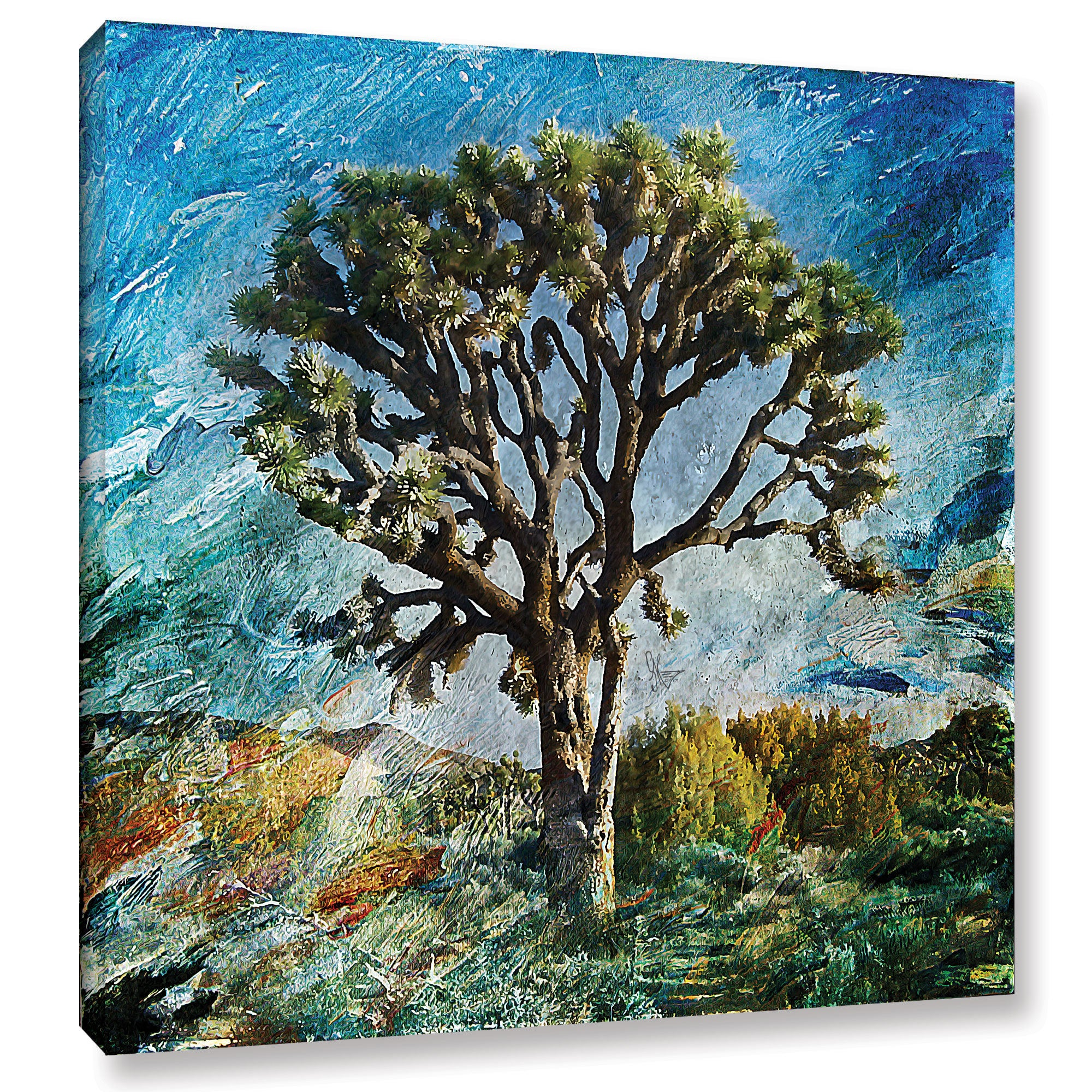ArtWall Scott Medwetz \'Joshua Tree\' Canvas Gallery-wrapped Art ...