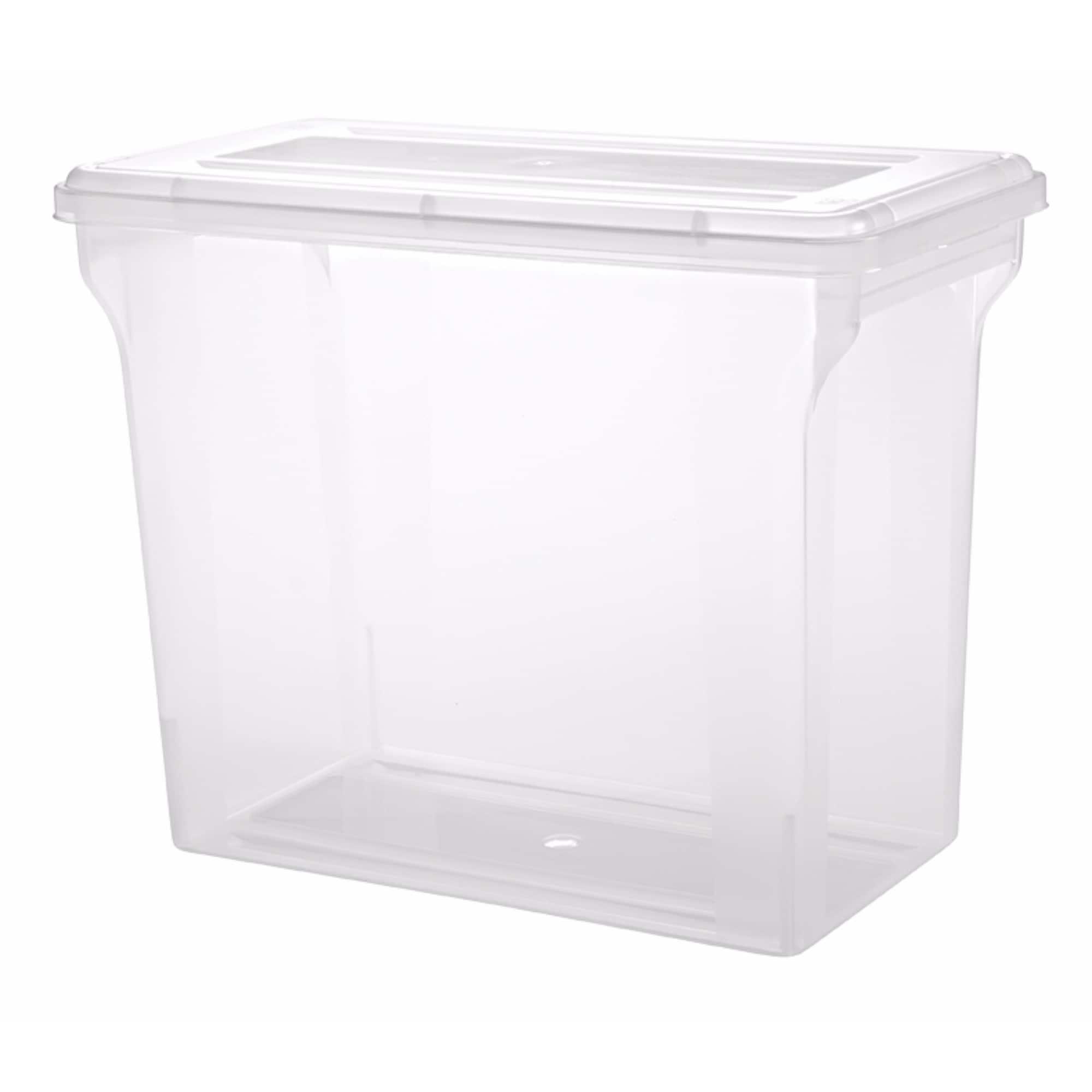Shop IRIS 12 x 12 inch Scrapbook File Storage Box Pack of 4 Free