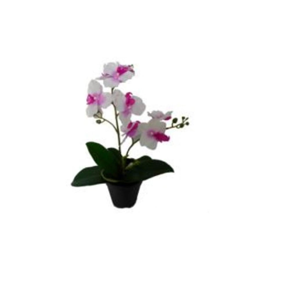 165 Tropical Artificial Flowering White And Pink Orchid Plant In