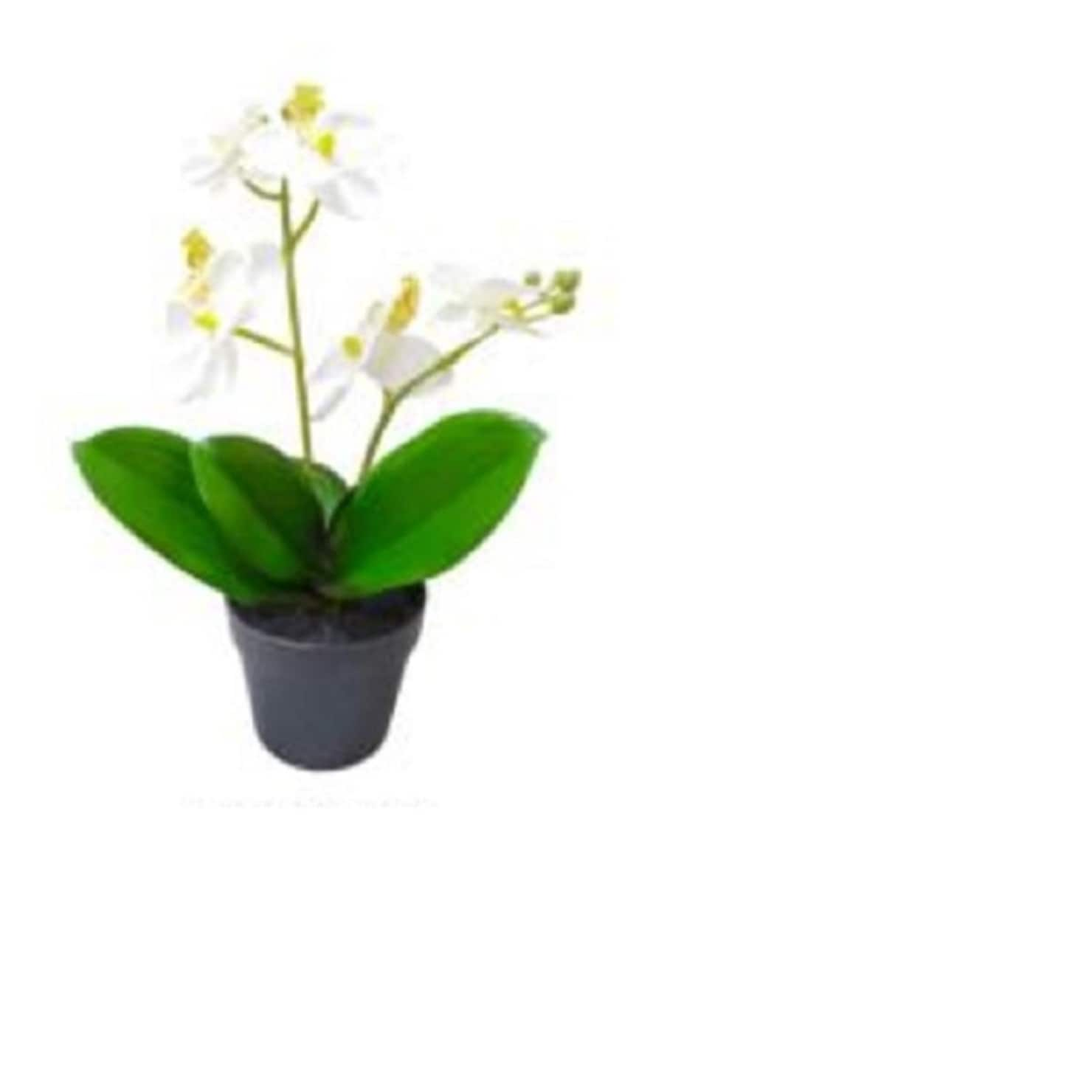 165 Tropical Artificial Flowering White Orchid Plant In Pot Free