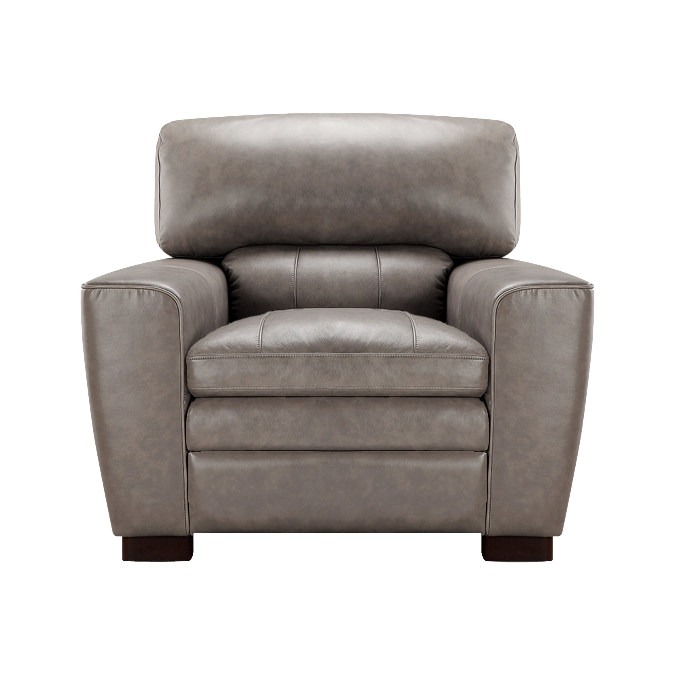 Avery Top Grain Italian Leather Club Chair Free Shipping Today 18008012