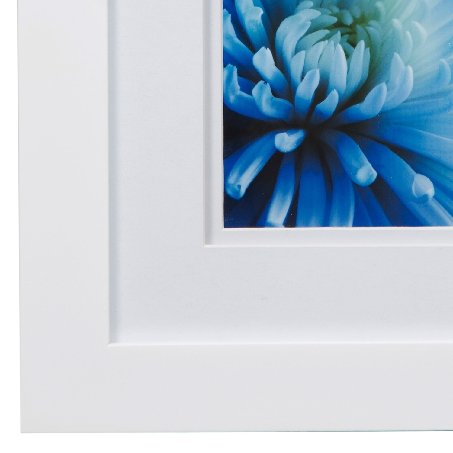 Gallery 8X10 Wide White Double Mat to 5x7 Picture Frame - Free ...