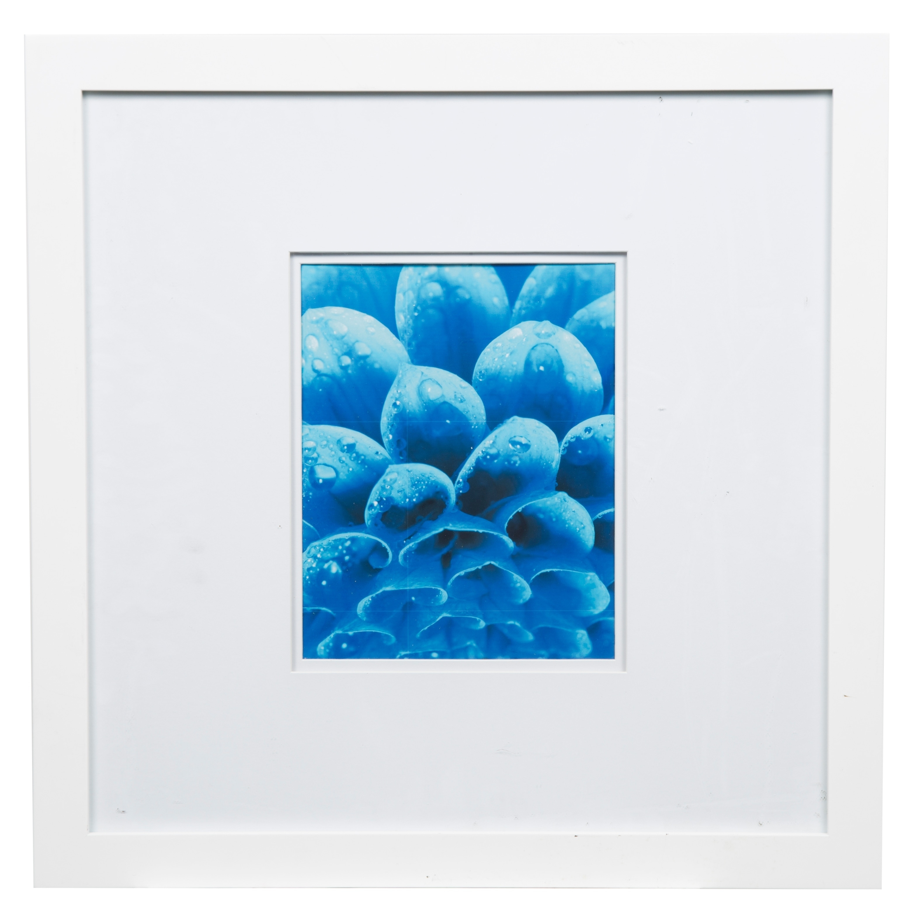 Gallery 18x18 wide white double mat to 8x10 picture frame free gallery 18x18 wide white double mat to 8x10 picture frame free shipping on orders over 45 overstock 24279750 jeuxipadfo Gallery