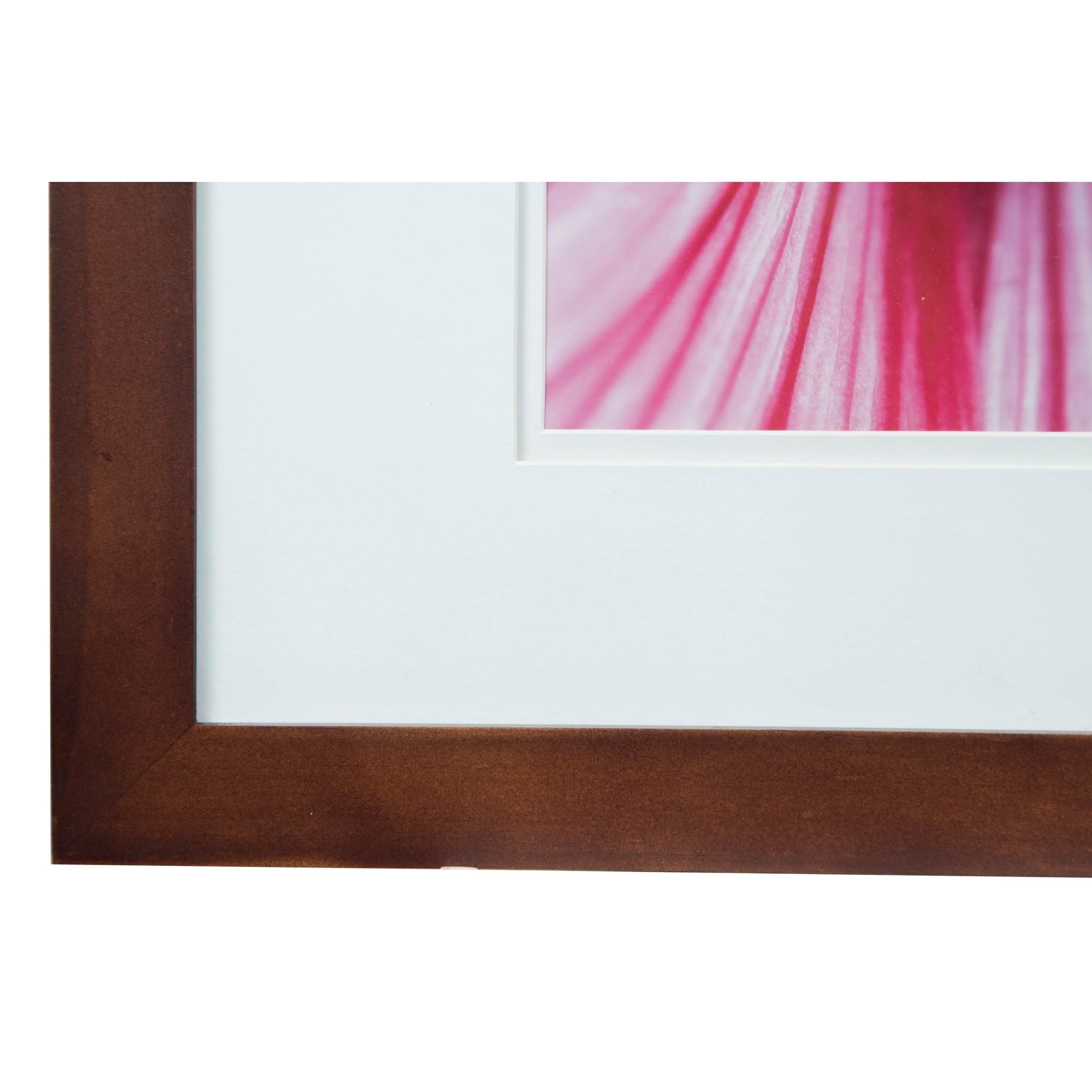 Gallery 16x20 Wide Walnut Double Mat to 11x14 Picture Frame - Free ...