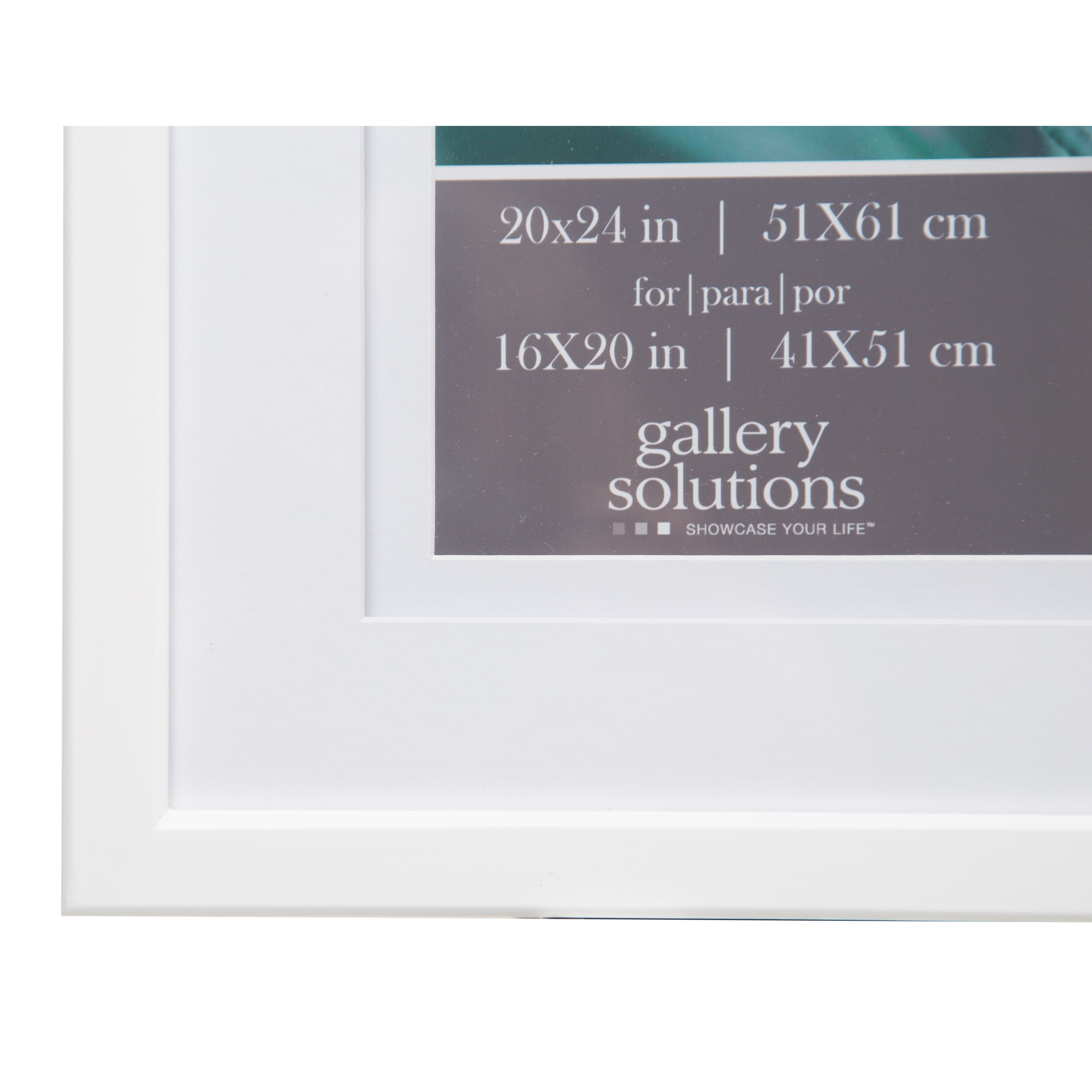 Gallery 20x24 Double Mat to 16x20 Picture Frame - Free Shipping ...