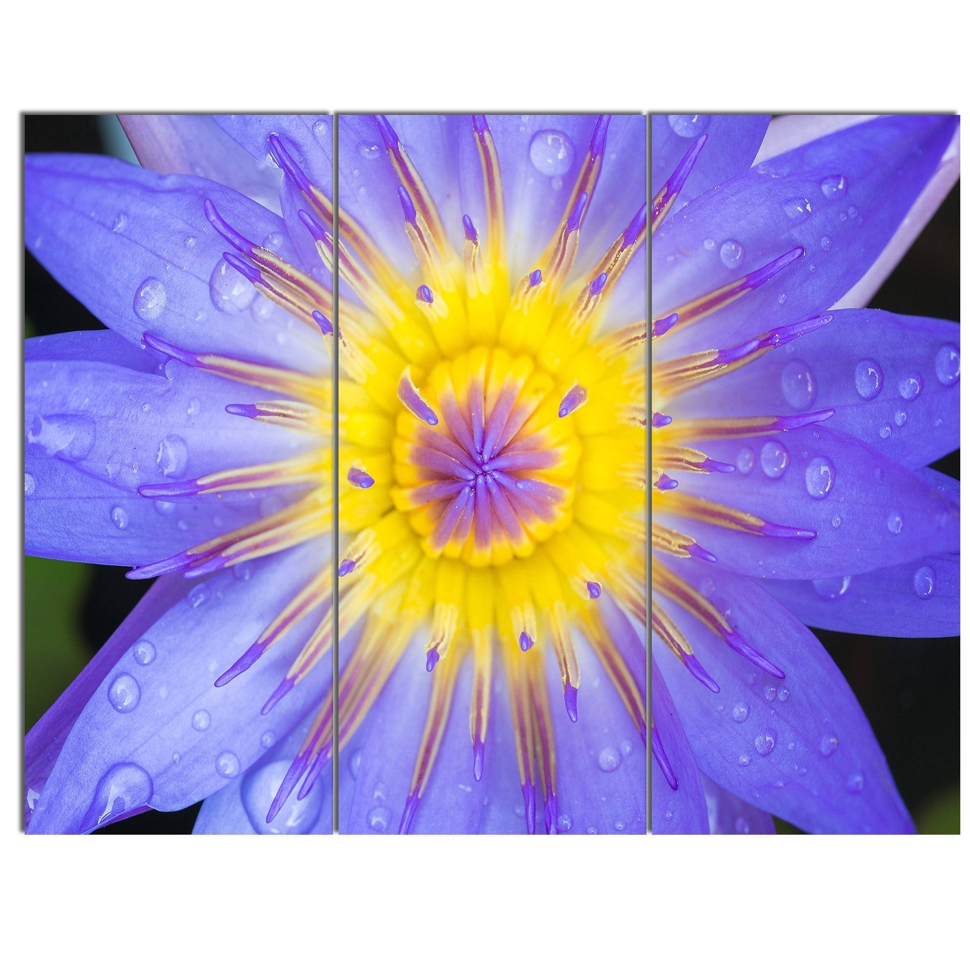Fantastic Purple Flower Wall Art Gallery - The Wall Art Decorations ...