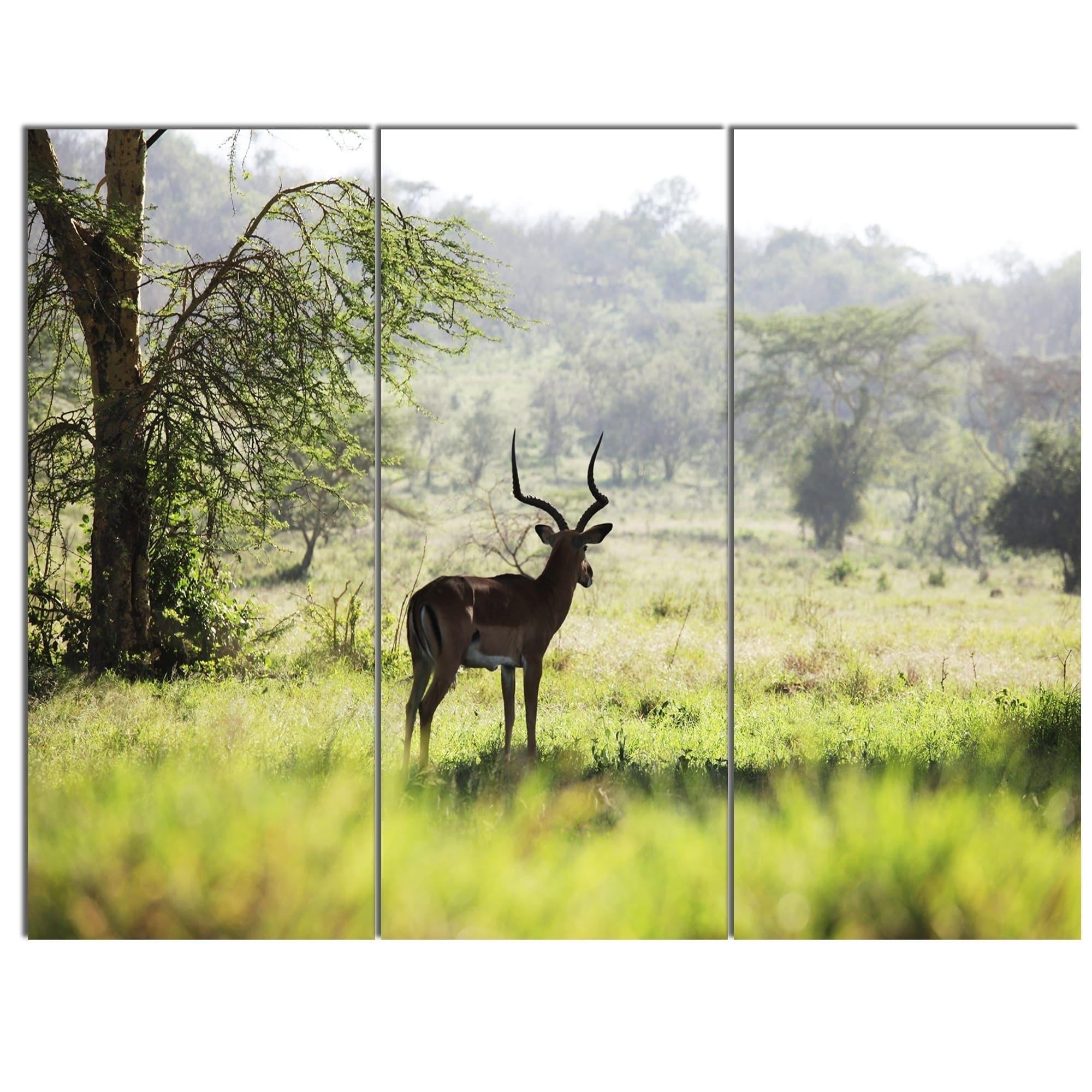 Phase1 Designart \'Solitary Antelope in Green Park\' African Landscape ...