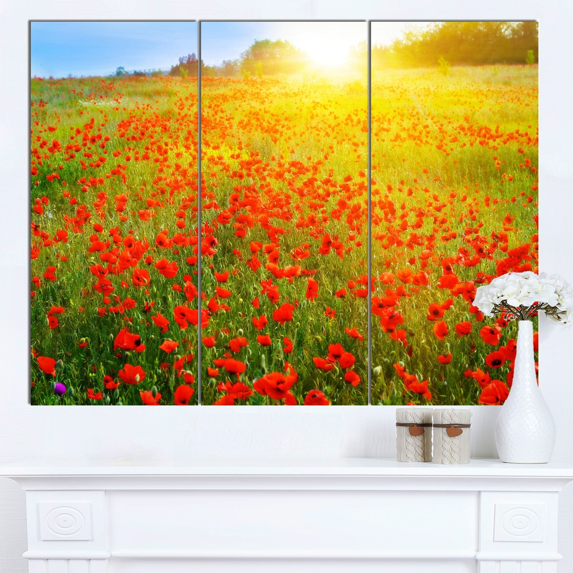 Designart \'Beautiful Sunshine over Poppy Fields\' Floral Wall Artwork on Canvas