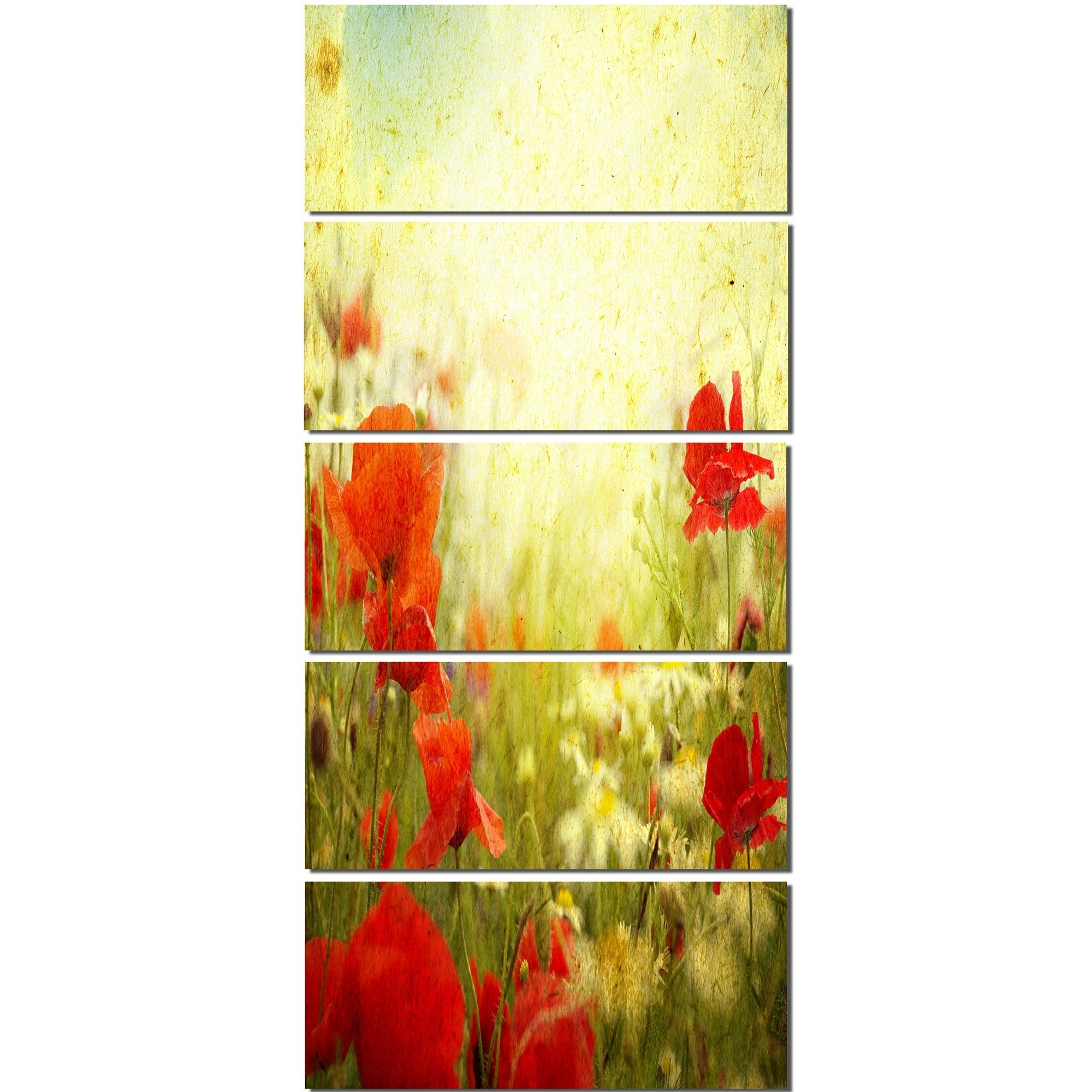 Designart \'Grunge Background with Red Poppies\' Modern Floral Glossy ...