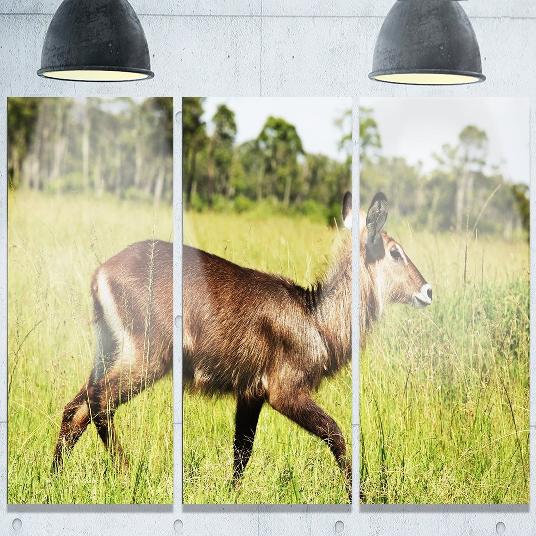 Wonderful Metal Wildlife Wall Art Ideas - The Wall Art Decorations ...