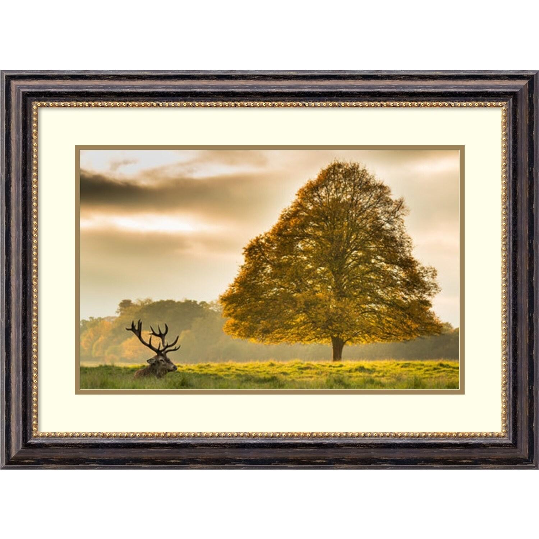 Shop Framed Art Print \'Elk and Autumn Tree\' by Tudor Amot 31 x 23 ...