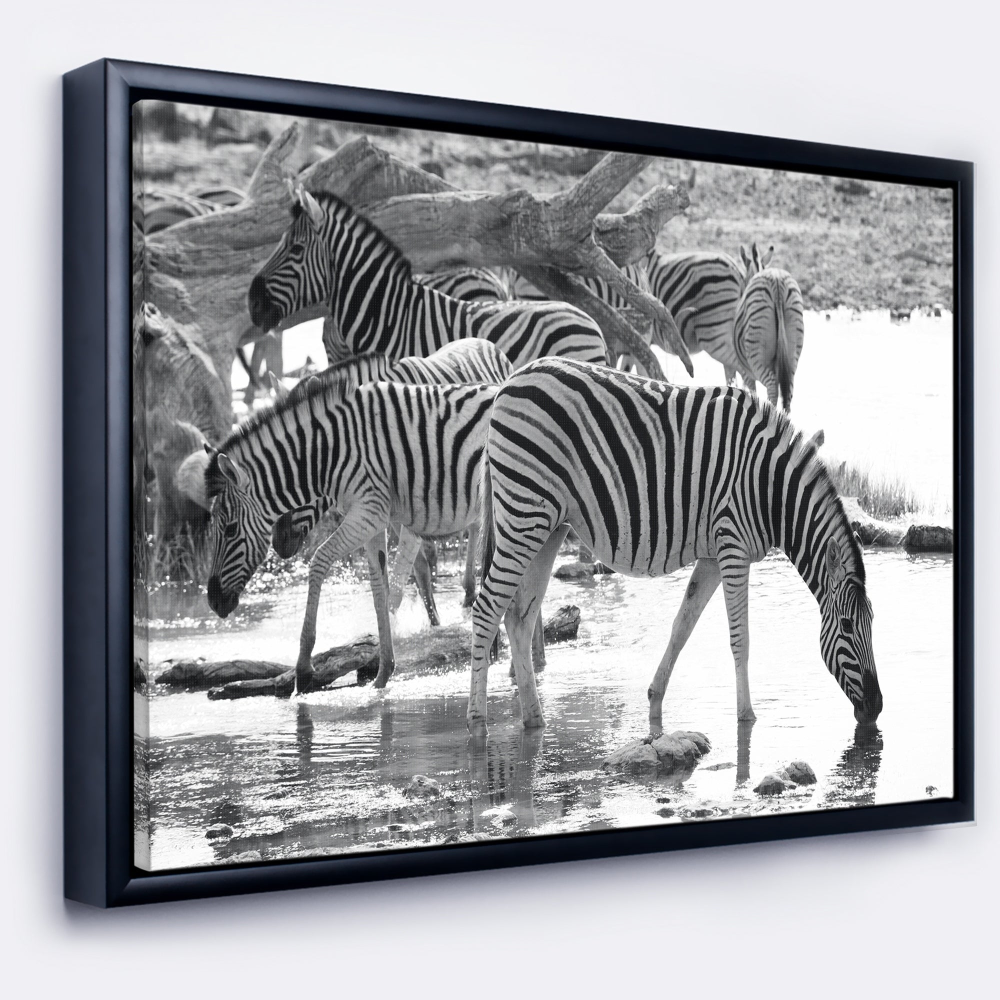 Shop designart herd of zebra black and white african framed canvas art print on sale free shipping today overstock com 18945518