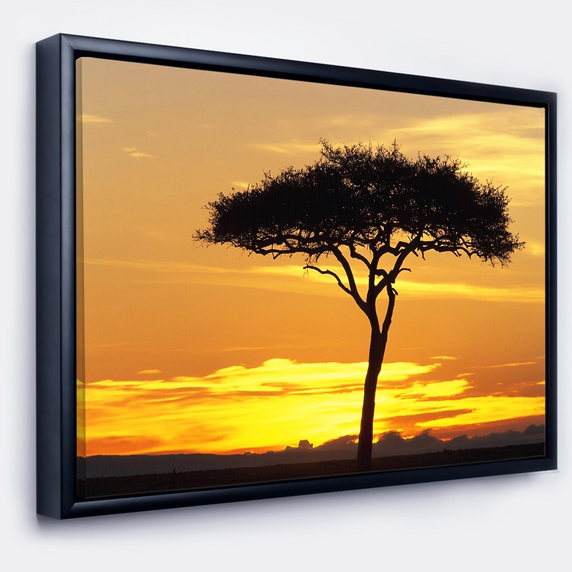 Shop Designart \'Beautiful Sunset Through Acacia Tree\' African ...