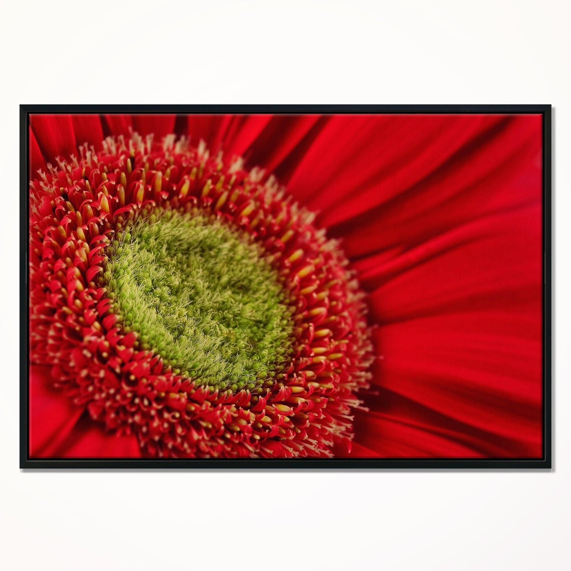 Designart red daisy gerbera flower close up flowers framed canvas designart red daisy gerbera flower close up flowers framed canvas wall artwork free shipping today overstock 25010485 izmirmasajfo