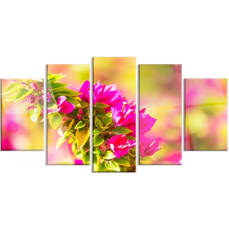 Designart \'Beautiful Pink Bougainvillea Flowers\' Floral Glossy Metal ...