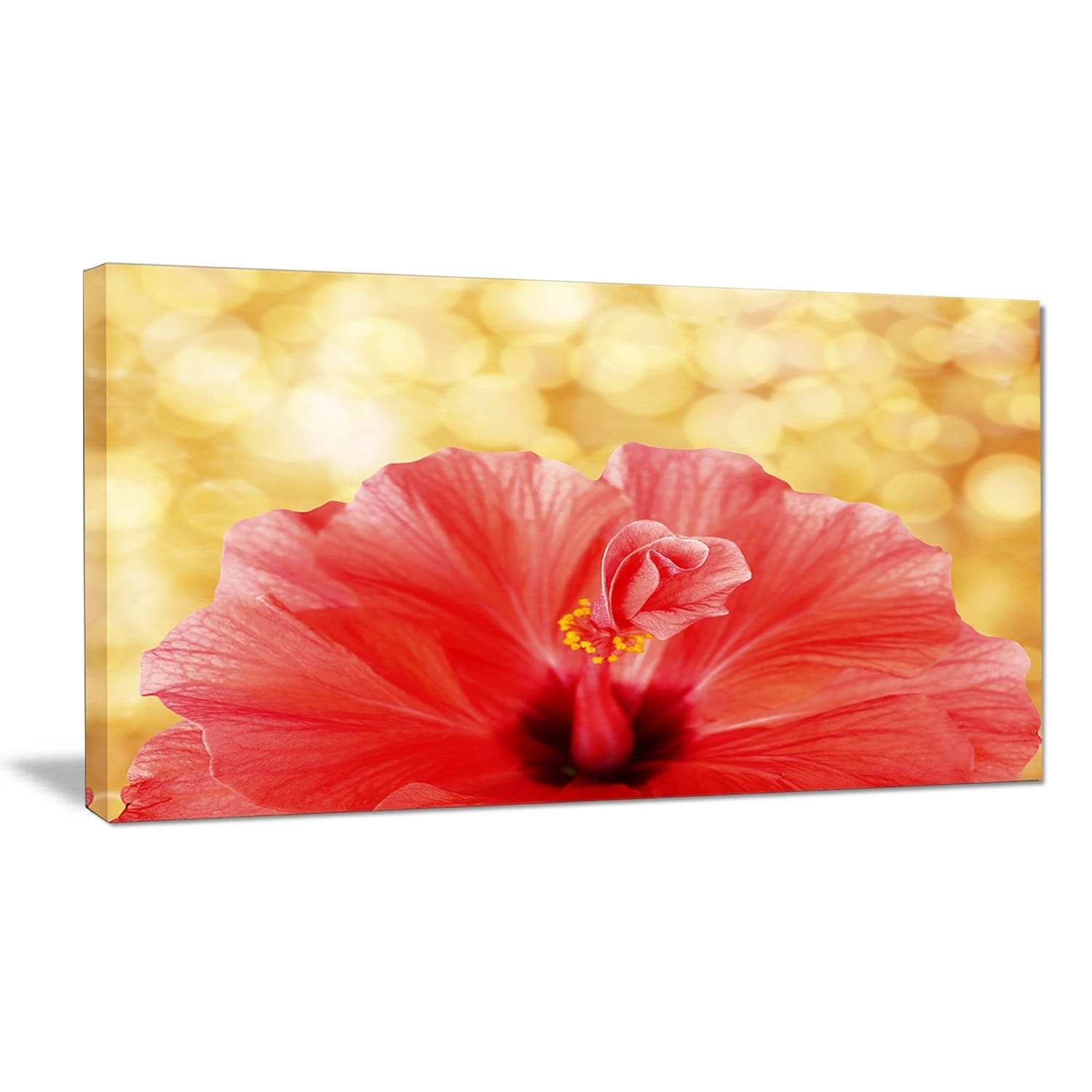 Shop designart hibiscus flower with lit up background large floral shop designart hibiscus flower with lit up background large floral canvas artwork free shipping on orders over 45 overstock 19746649 izmirmasajfo
