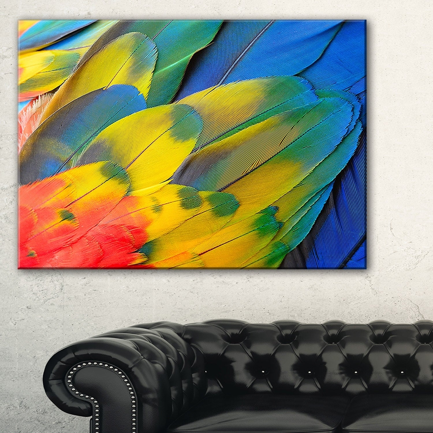 Shop Scarlet Macaw Feathers - Photography Glossy Metal Wall Art ...