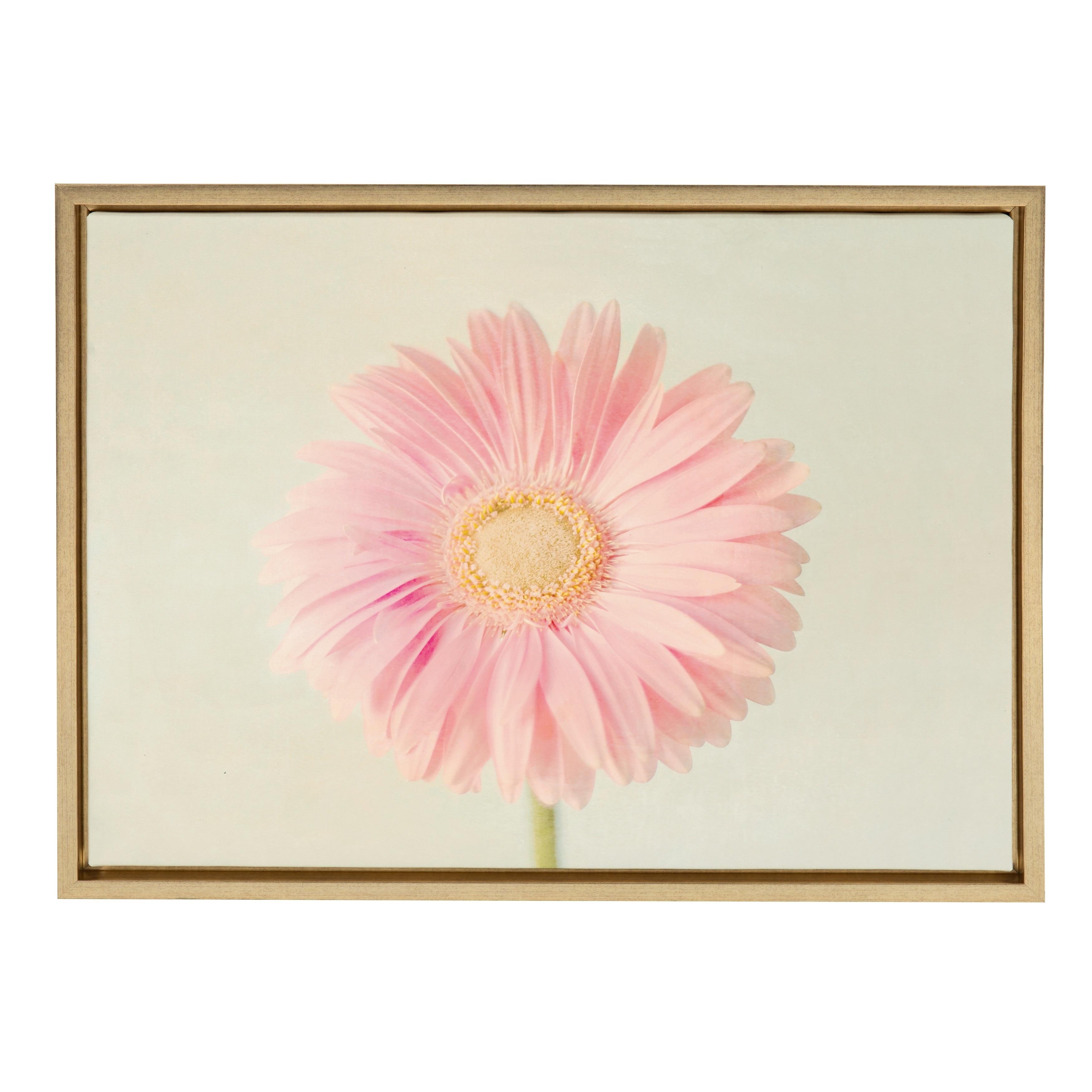 Shop Sylvie Pink Gerbera Daisy Flower Framed Canvas Wall Art Gold