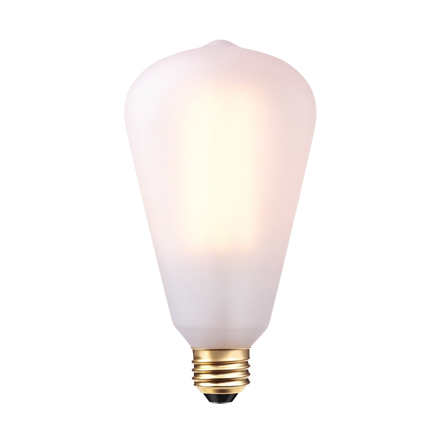 60W Frosted Vintage Edison Large S Type Dimmable Incandescent Bulb