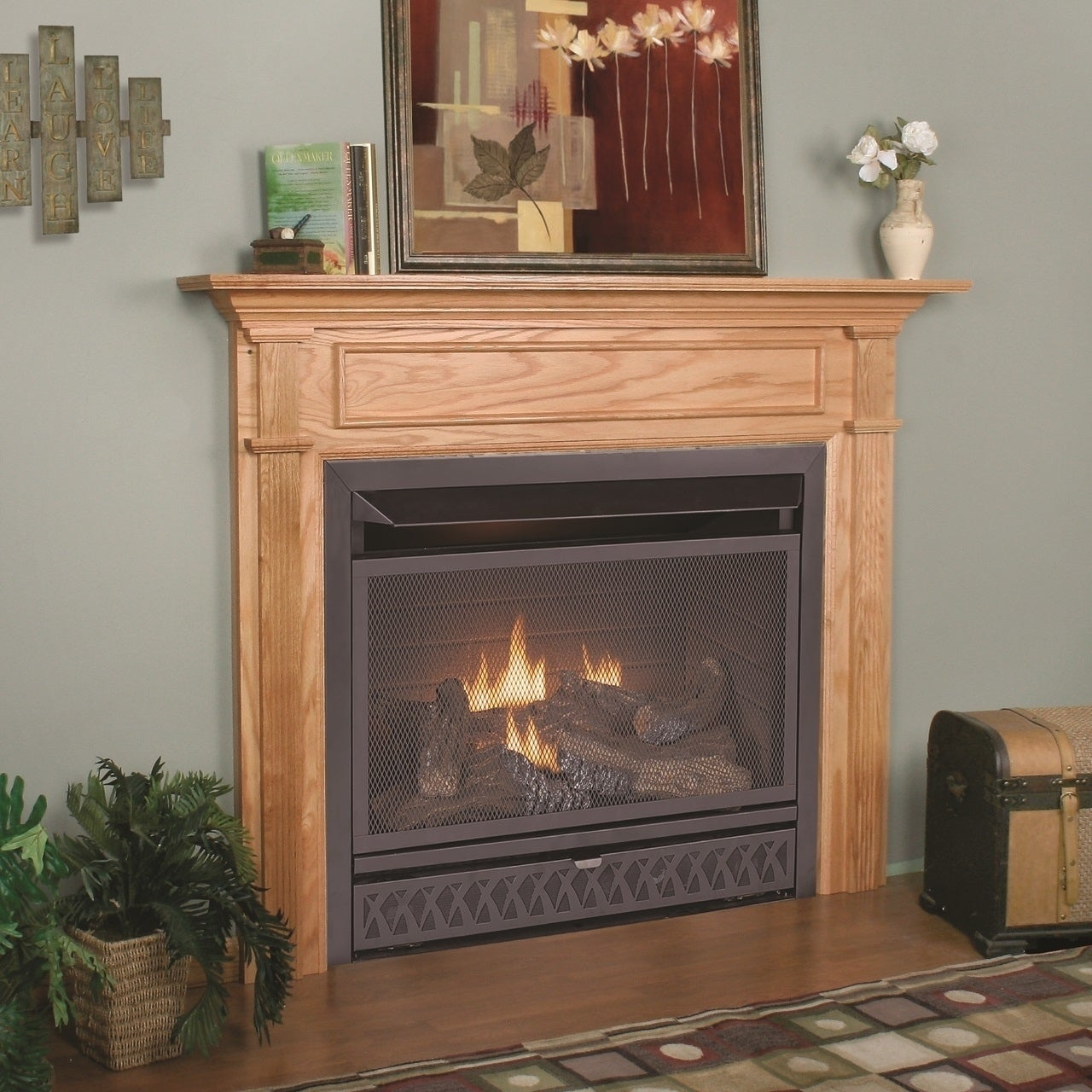 Procom Fireplaces 29 In Ventless Dual Fuel Firebox Insert Fbnsd28t Free Shipping Today 21162489