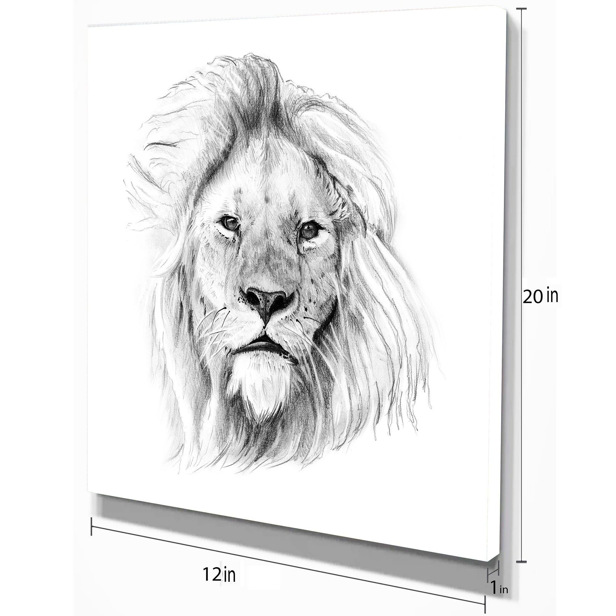 A3 signed by artist Animals Realism AFRICAN LION colour pencil print A4