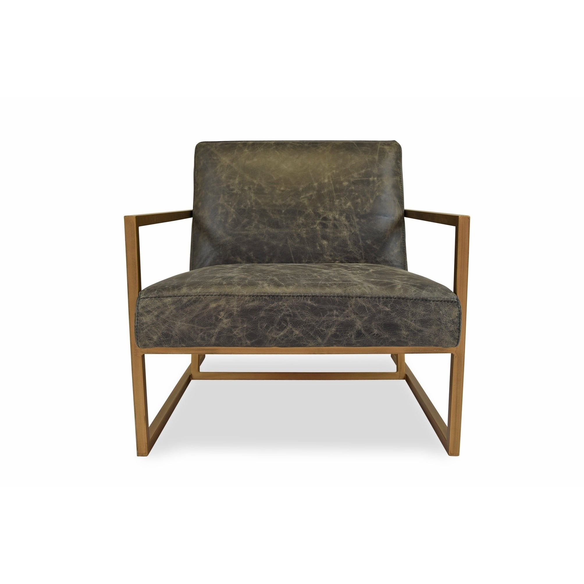 Shop Harrington Modern Leather Accent Chair - Lounge Chair for ...