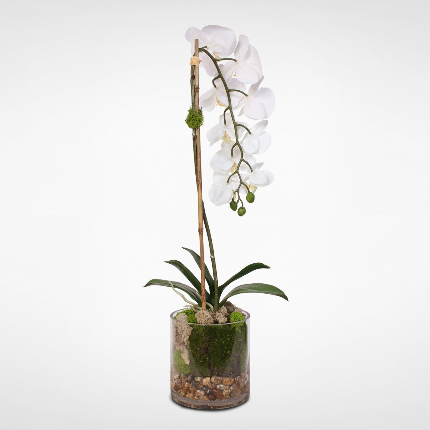 Real Touch White Phalaenopsis Orchid And Leaf In A Sleek