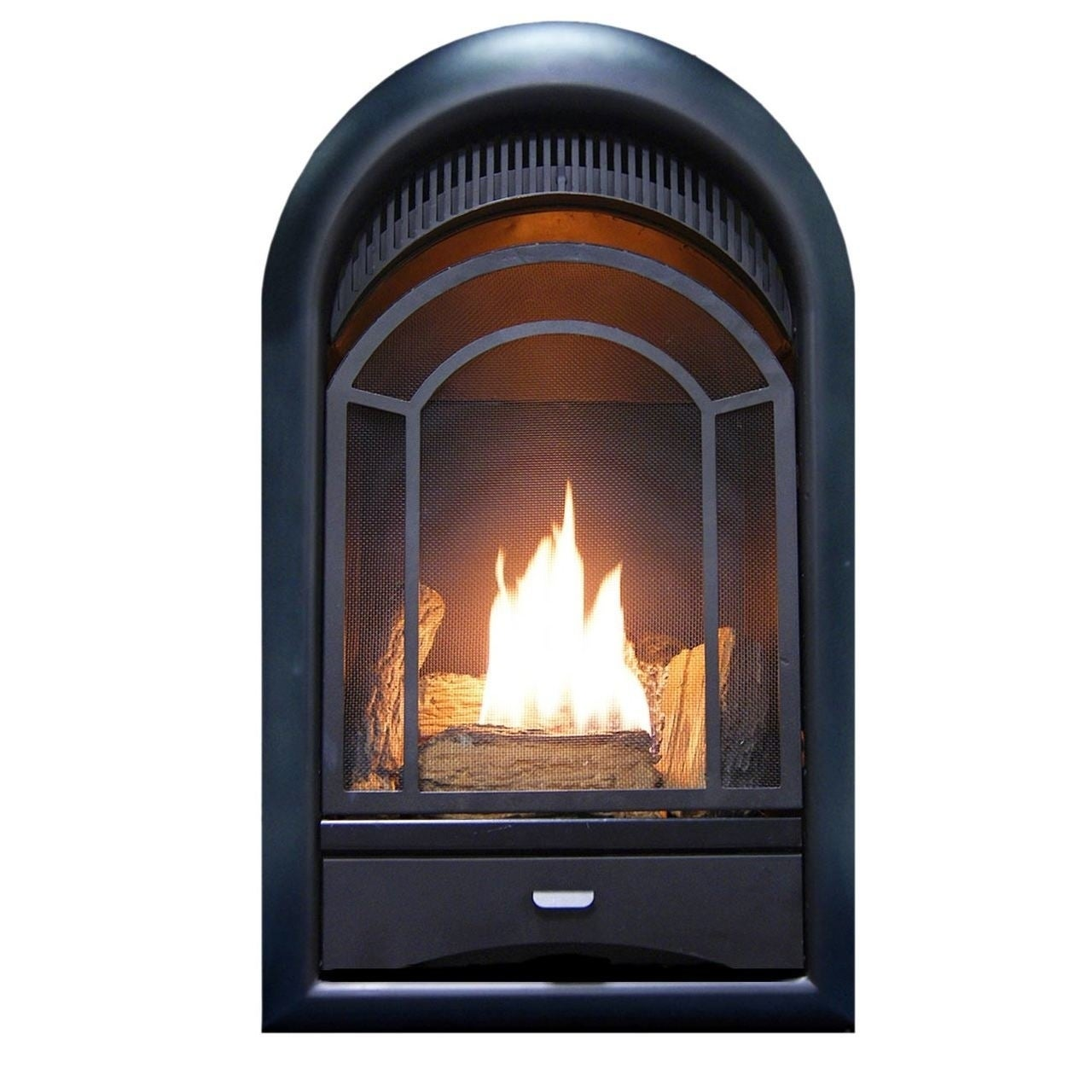 Shop Procom Ventless Fireplace Insert Thermostat Control Arched Door